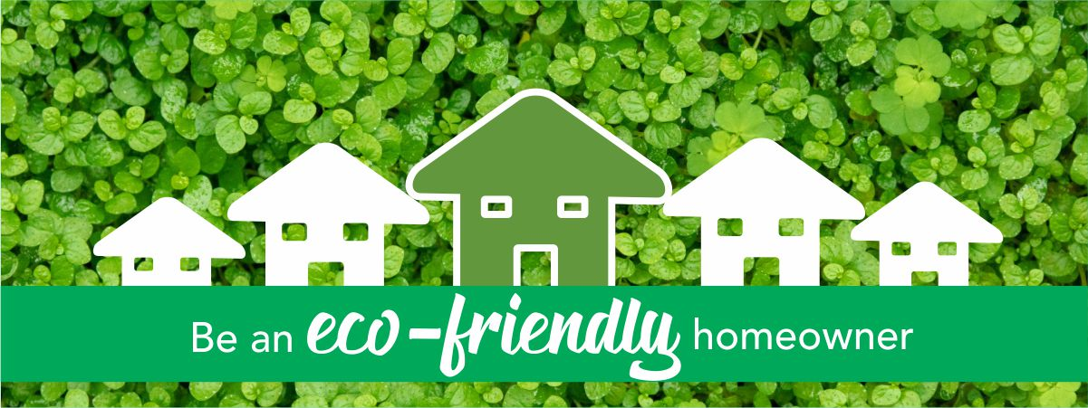 Go green with Eco Friendly Homes